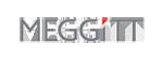 MEGGITT (ENDEVCO)